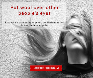Put wool over other people's eyes